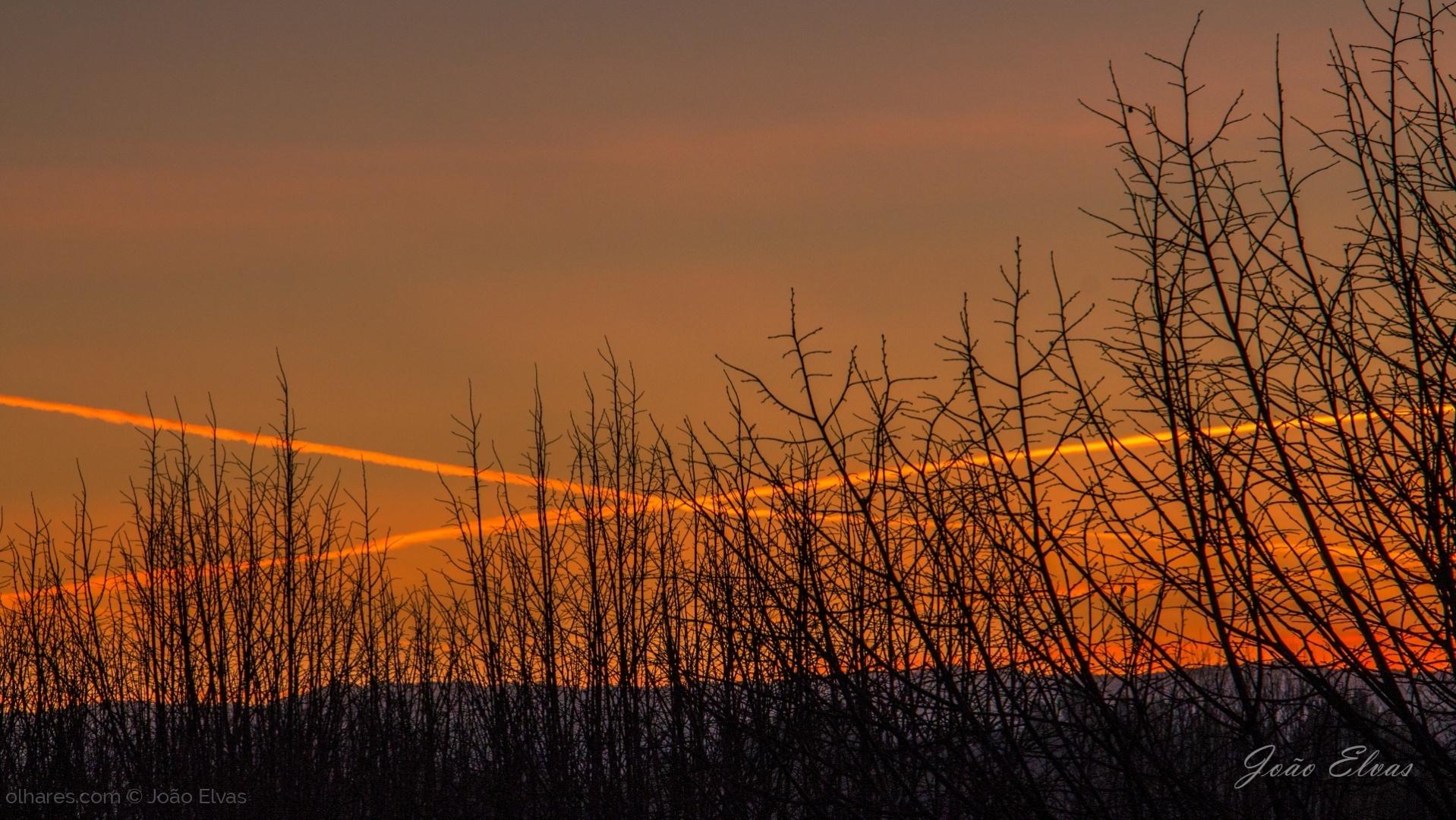 Paisagem Natural/Cruzamento ao amanhecer
