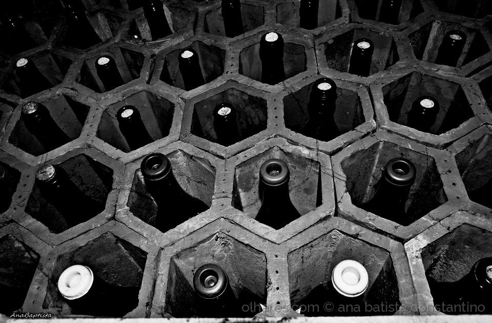 Outros/Vai à adega e prova o vinho ...