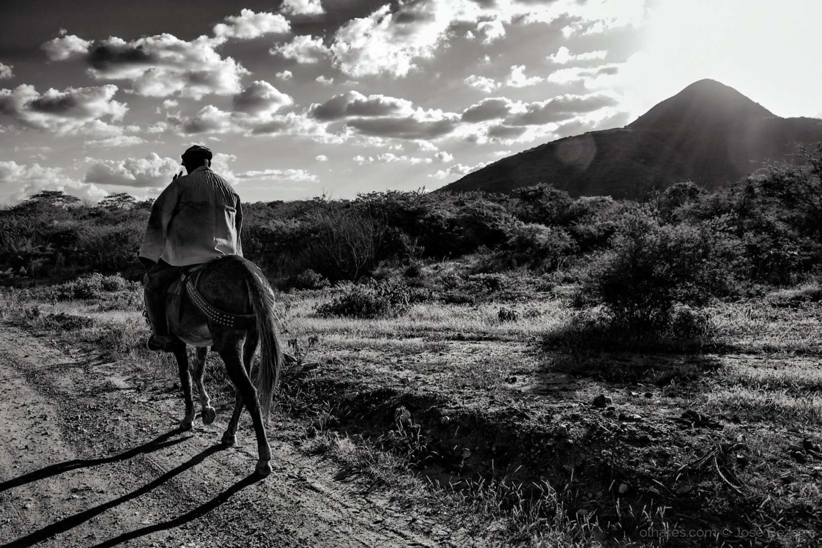 Fotojornalismo/Vaqueiros da Região Central