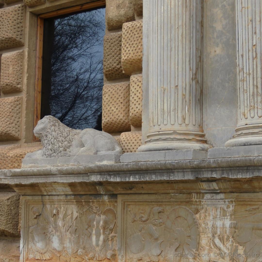 História/O leão à janela.