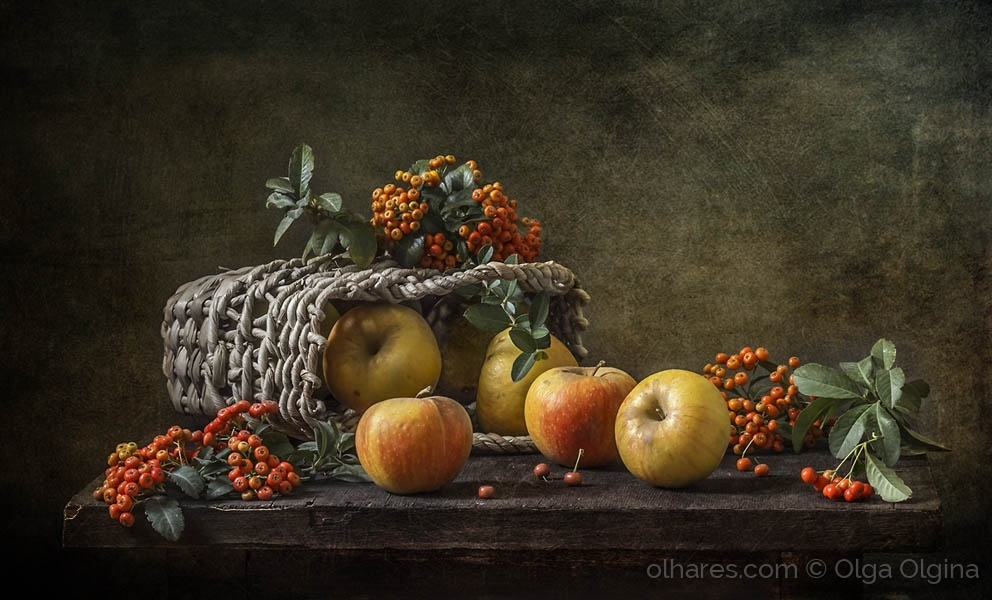 Outros/Pyracantha and apples