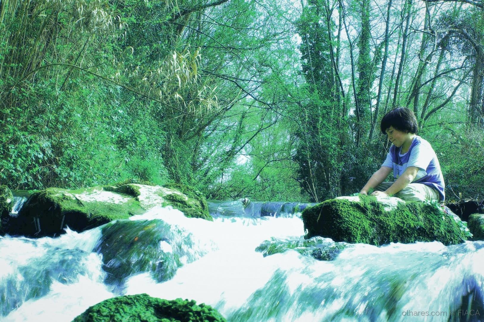 Paisagem Natural/Aguas passadas não movem moinhos