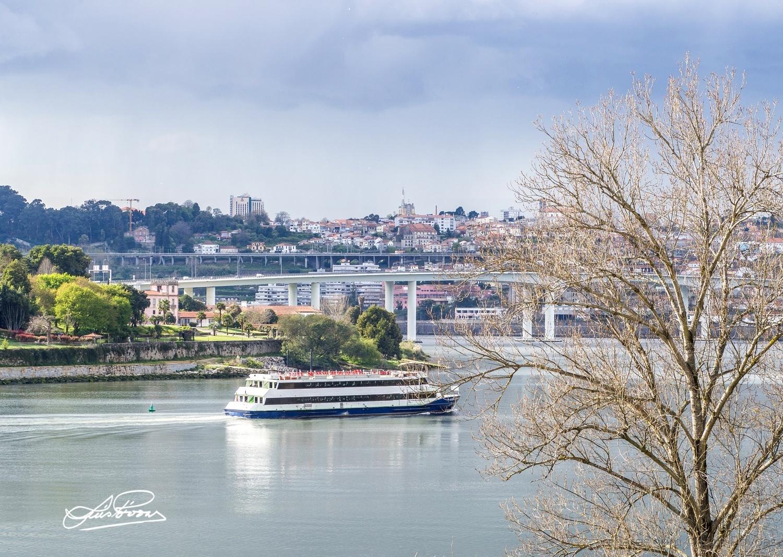 Paisagem Natural/Passeio no Douro