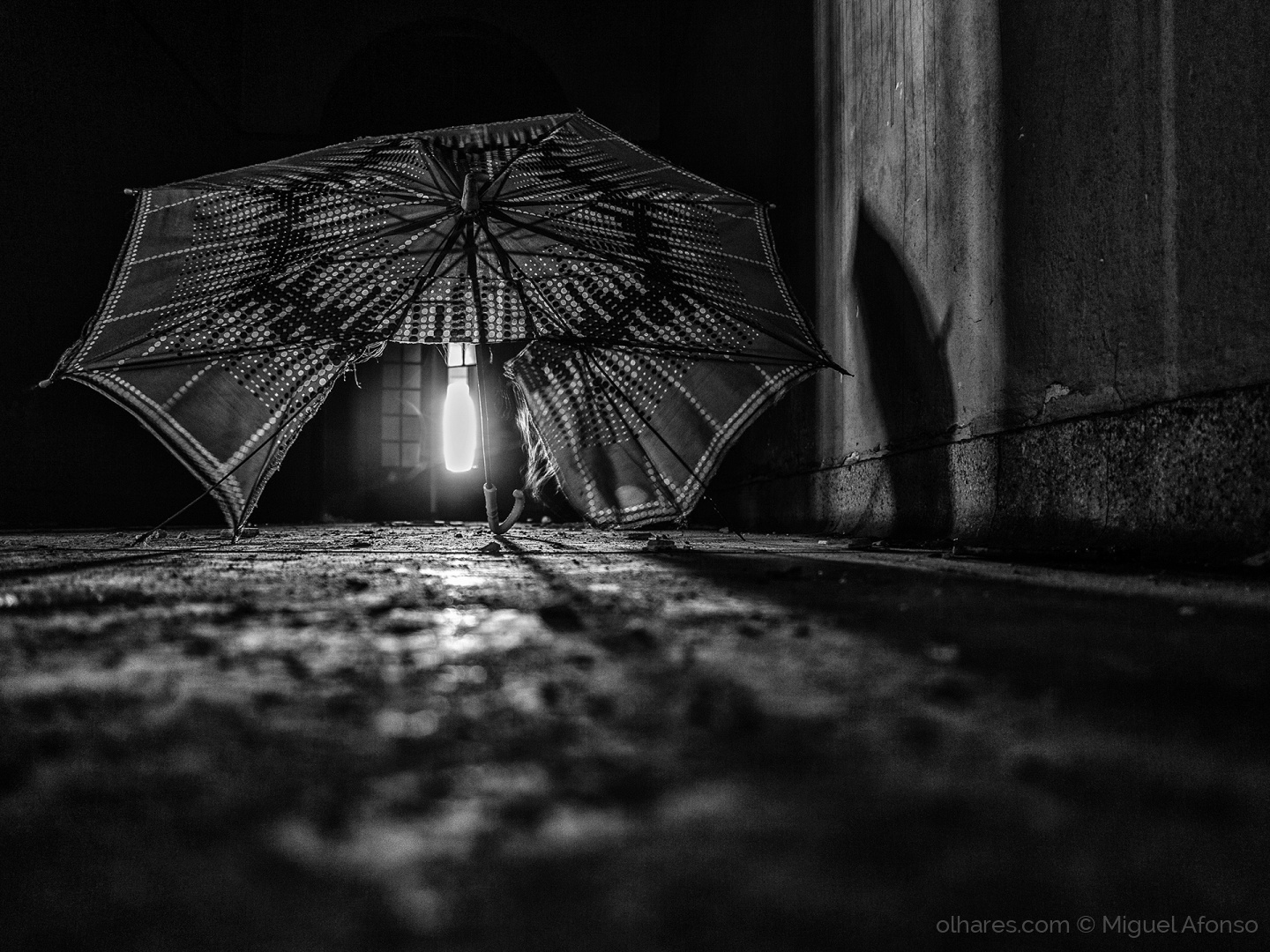 Paisagem Urbana/lost umbrella