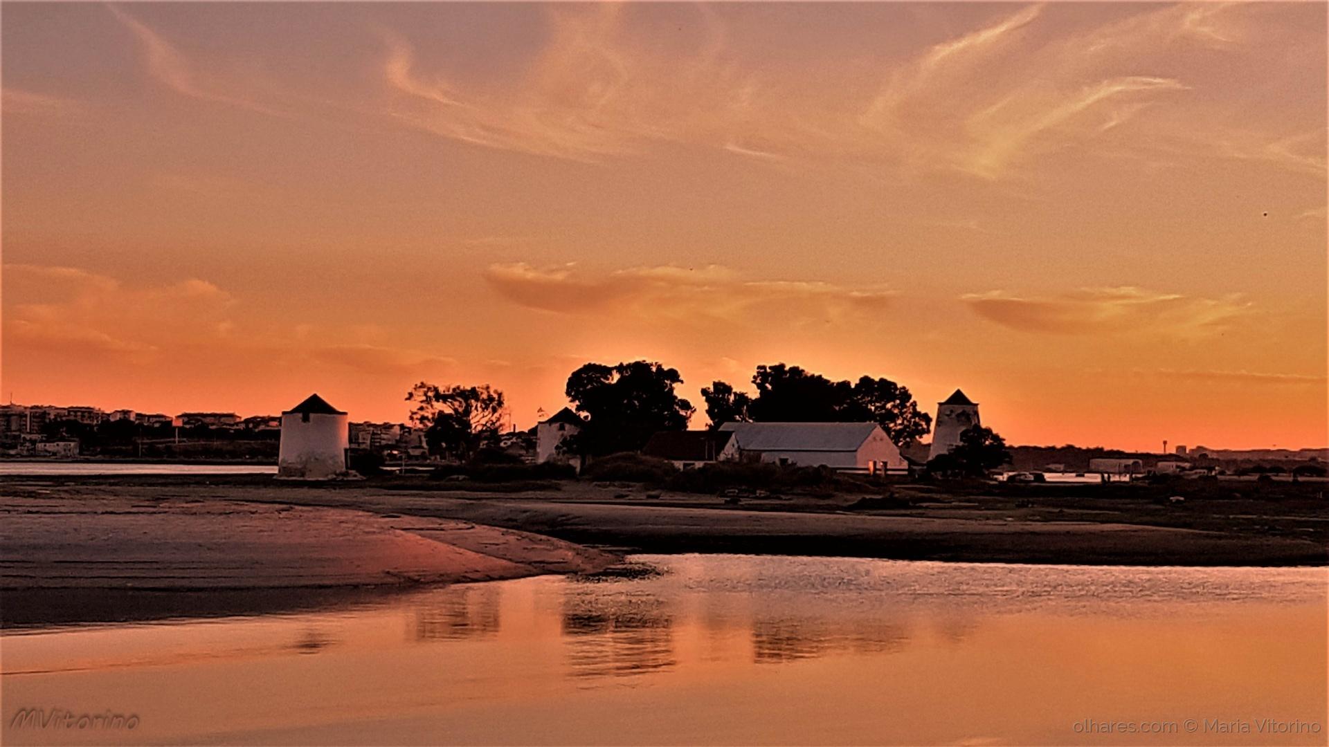 Paisagem Urbana/Alburrica dourada pelo pôr do sol (ler sff)