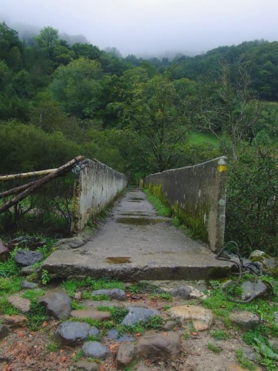 Paisagem Natural/Ponte de Cimento