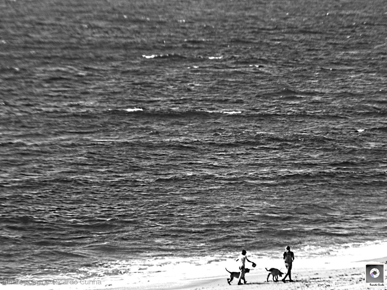Paisagem Natural/Passeio à beira Mar