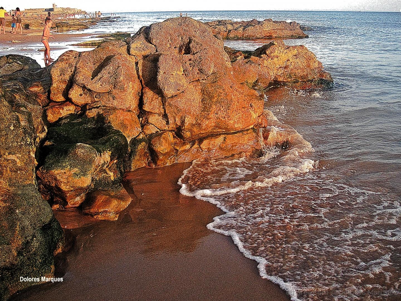 Paisagem Natural/Além deste mar