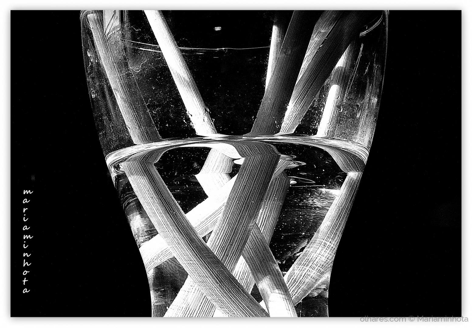 Abstrato/Acqua di Fiore