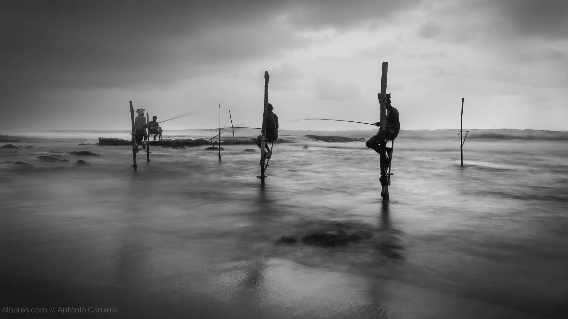 Paisagem Natural/Pescadores de luar