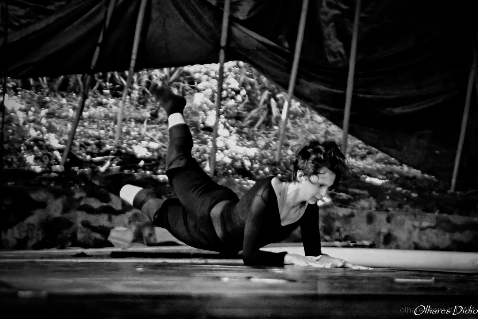 Espetáculos/Ballet no circo (descrição)