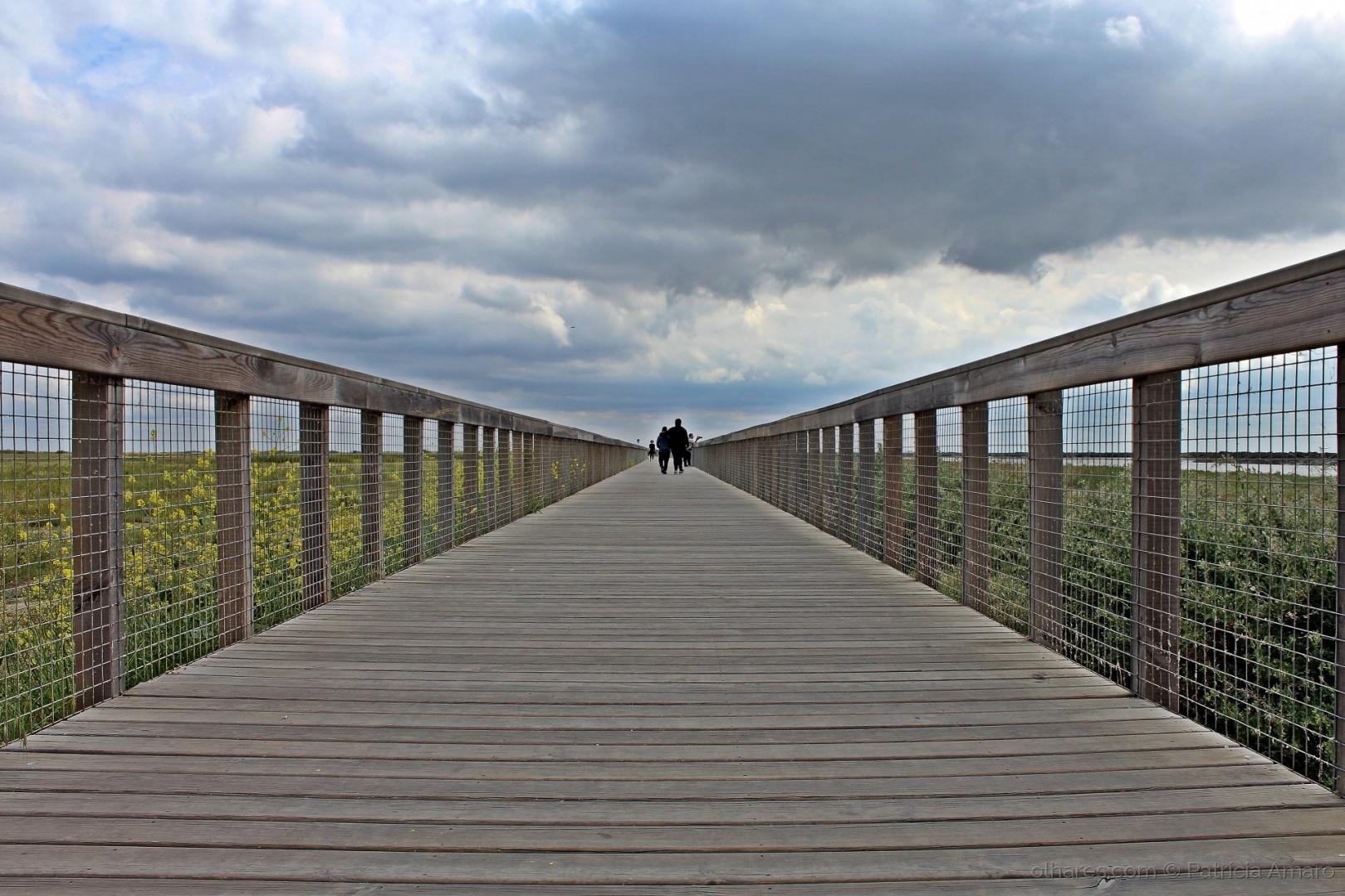 Gentes e Locais/Caminharemos juntos