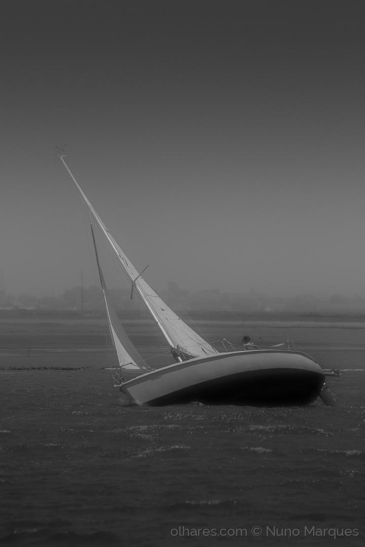 Desporto e Ação/Contra ventos e marés