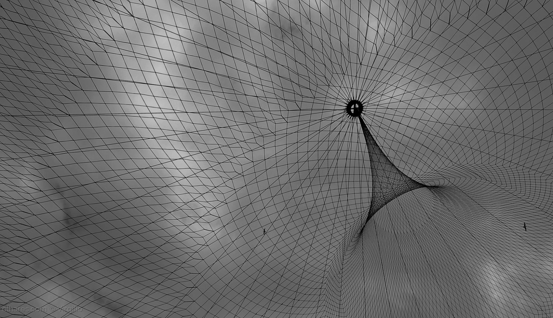 Abstrato/A teia....