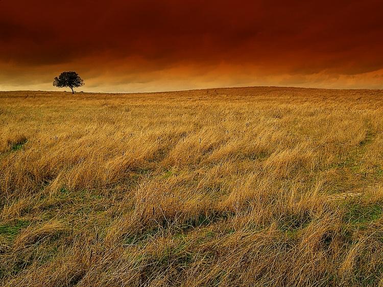 Paisagem Natural/Tardes de Outono...