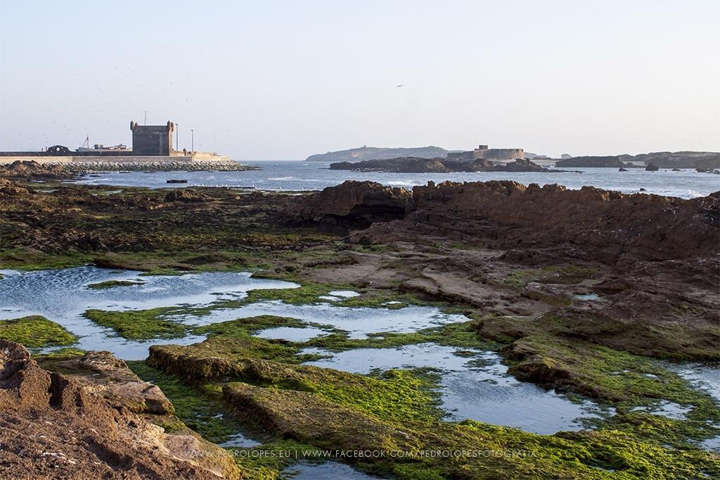 Paisagem Natural/Essaouira