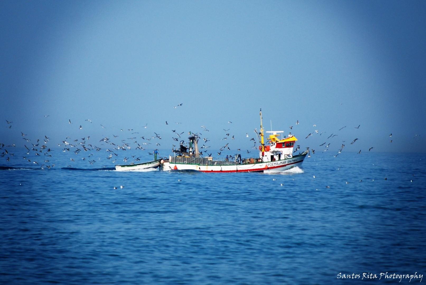 """Gentes e Locais/""""Poema do mar"""""""
