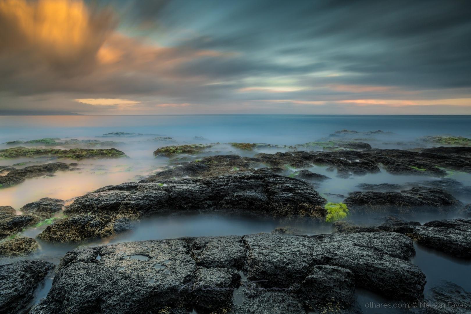 Paisagem Natural/Feteira, Ilha do Faial, Açores!