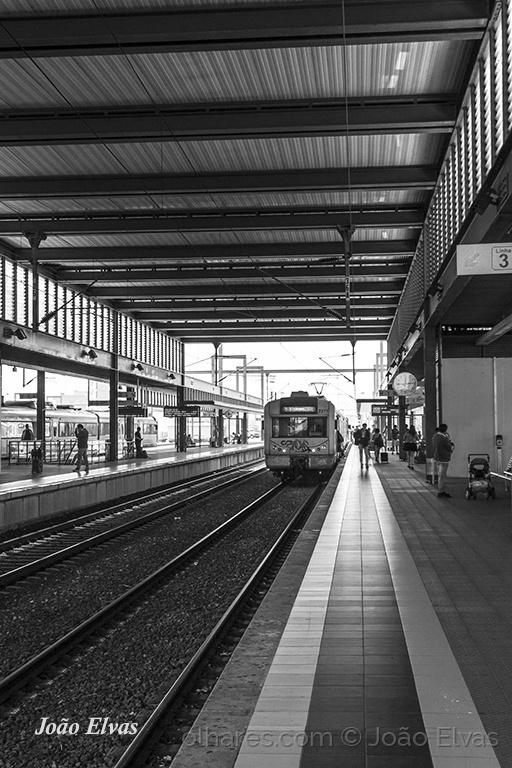 Fotojornalismo/Linha 3, Aveiro.