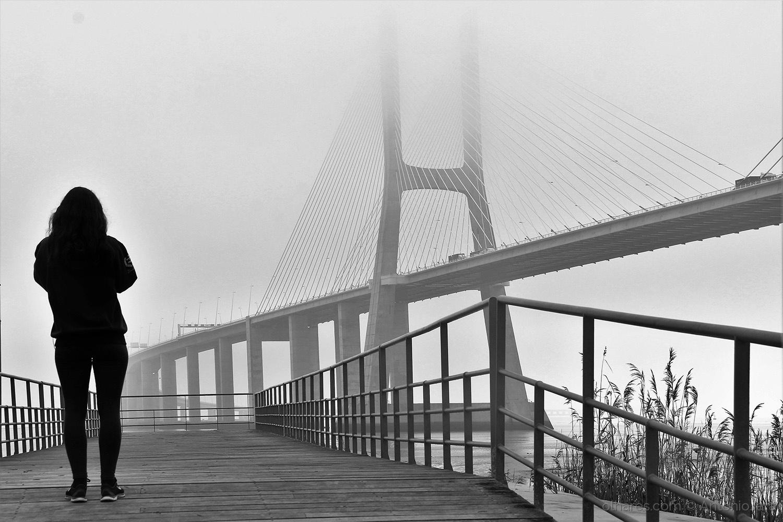 Paisagem Urbana/Fotografando a Ponte