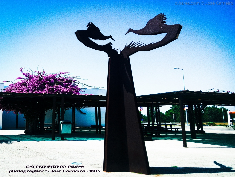 """Fotojornalismo/Photo #2217 """" CEGONHAS DE PORTUGAL ... monumento """""""