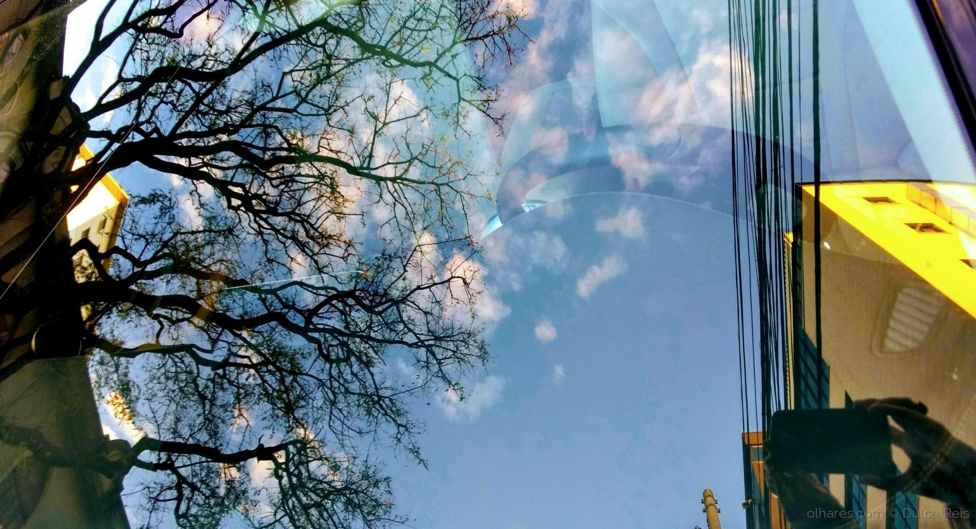 Abstrato/Reflexos no meu carro-reflexos de mim