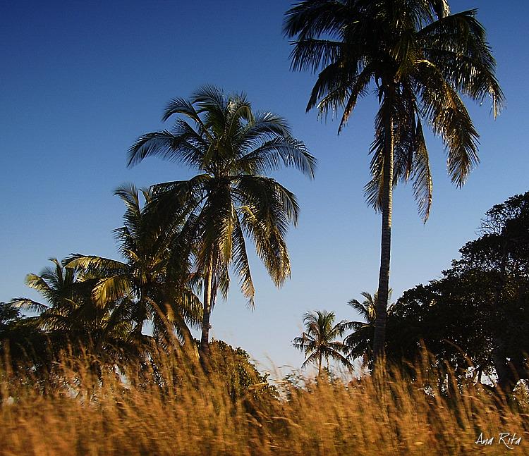 Outros/Maputo