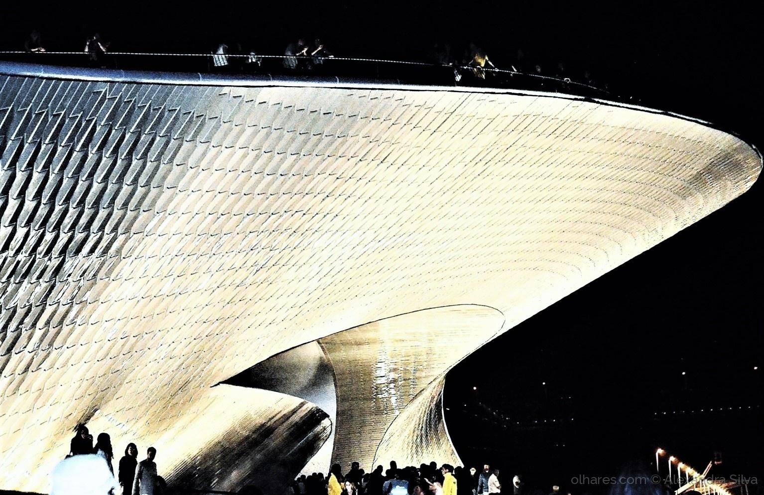 Espetáculos/Noite dos Museus no MAAT