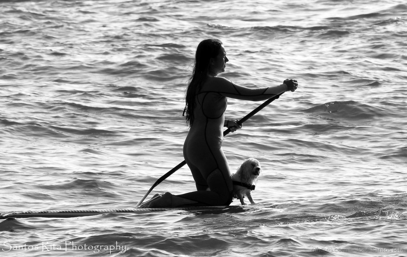 """Desporto e Ação/Cão """"Surfista"""""""