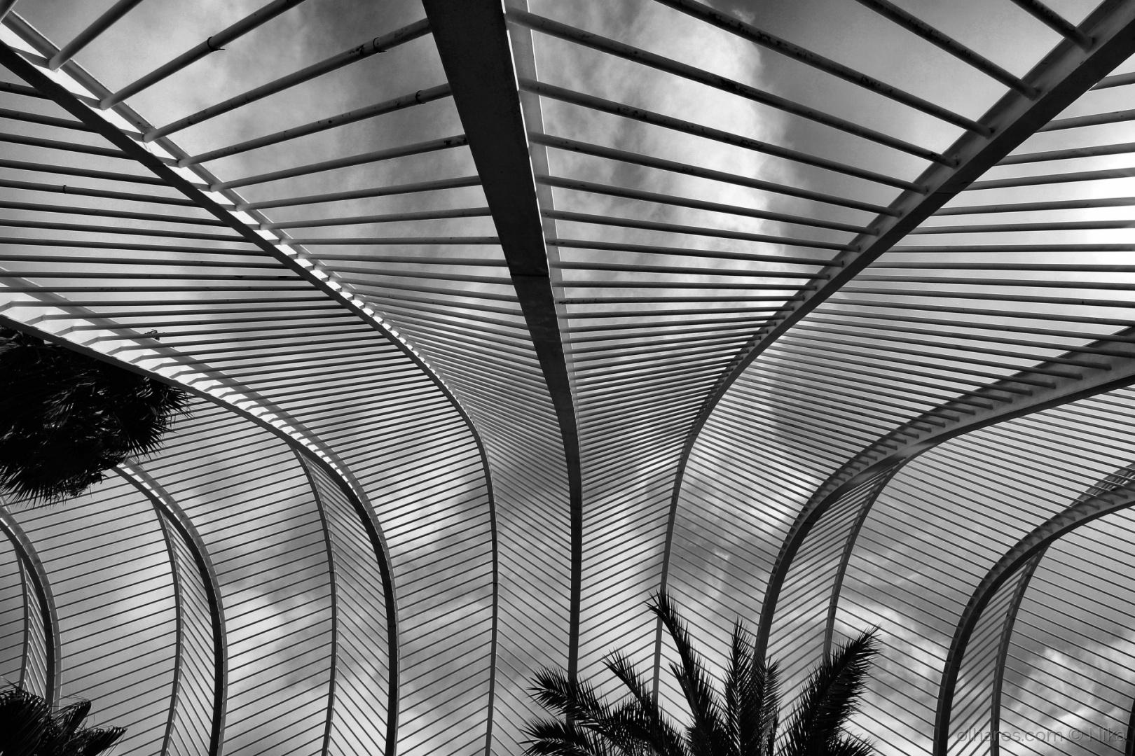 Paisagem Urbana/um olhar para os céus