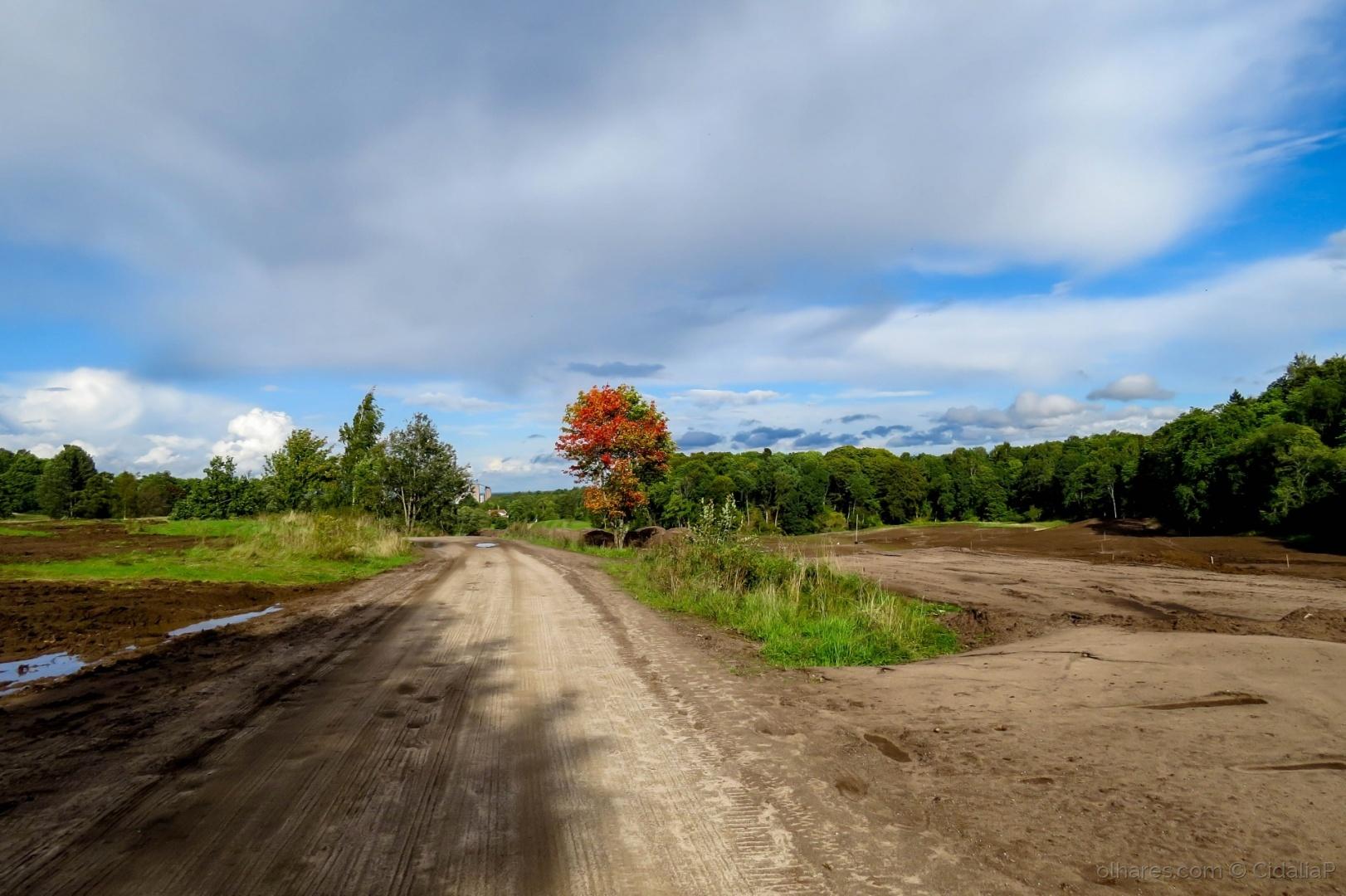 Paisagem Natural/Outono dá entrada