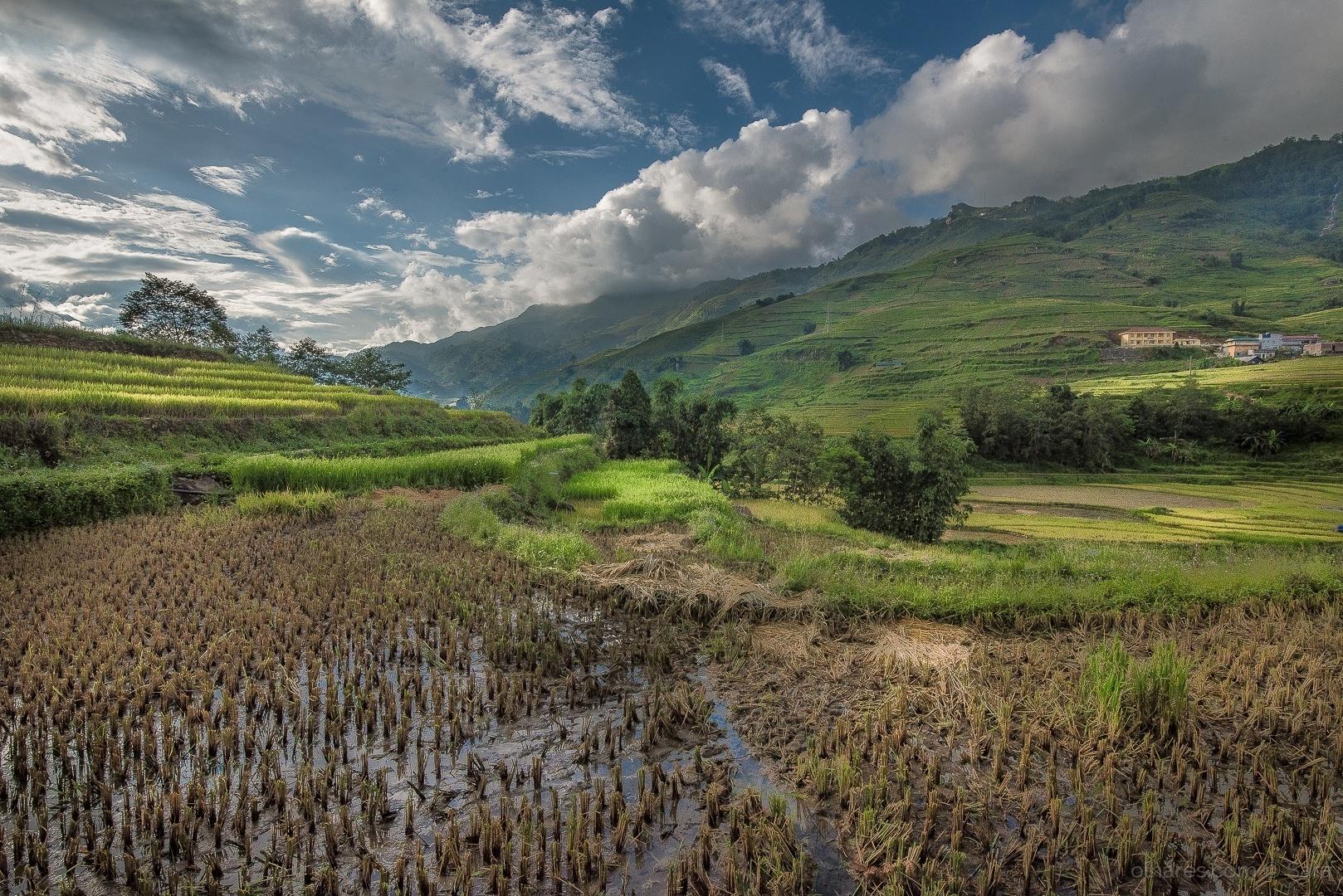 Paisagem Natural/Terraços de arroz...