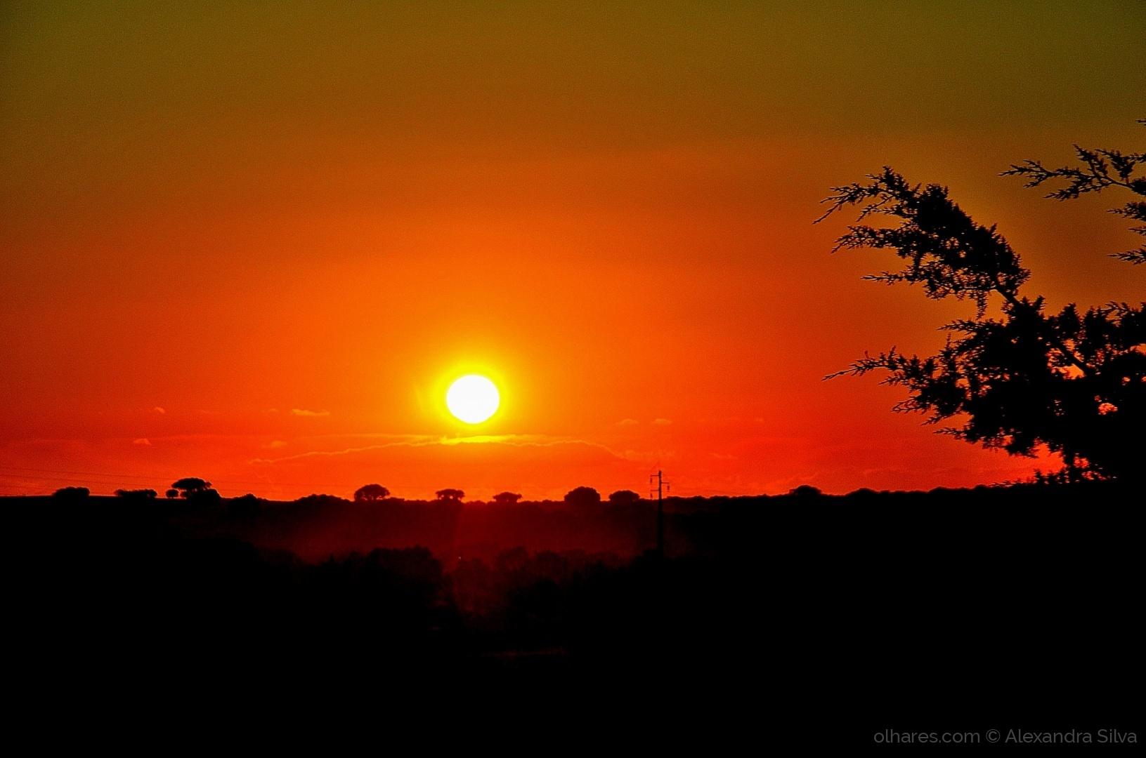 Paisagem Natural/Pôr do Sol I
