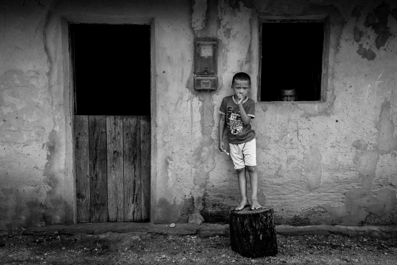 Retratos/Algodões