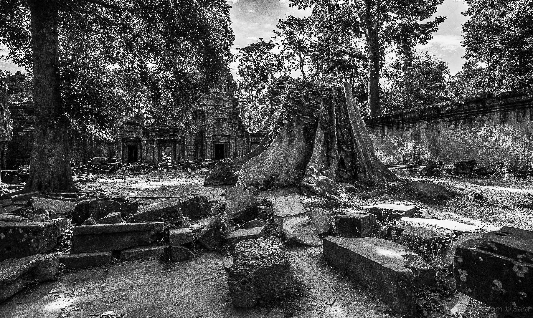 História/A natureza tomou de volta o que lhe pertencia...