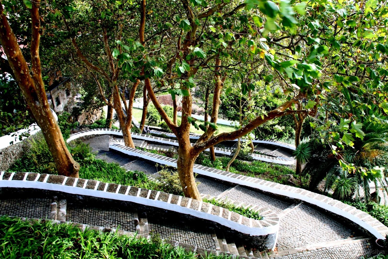 Paisagem Natural/Descida para o jardim...
