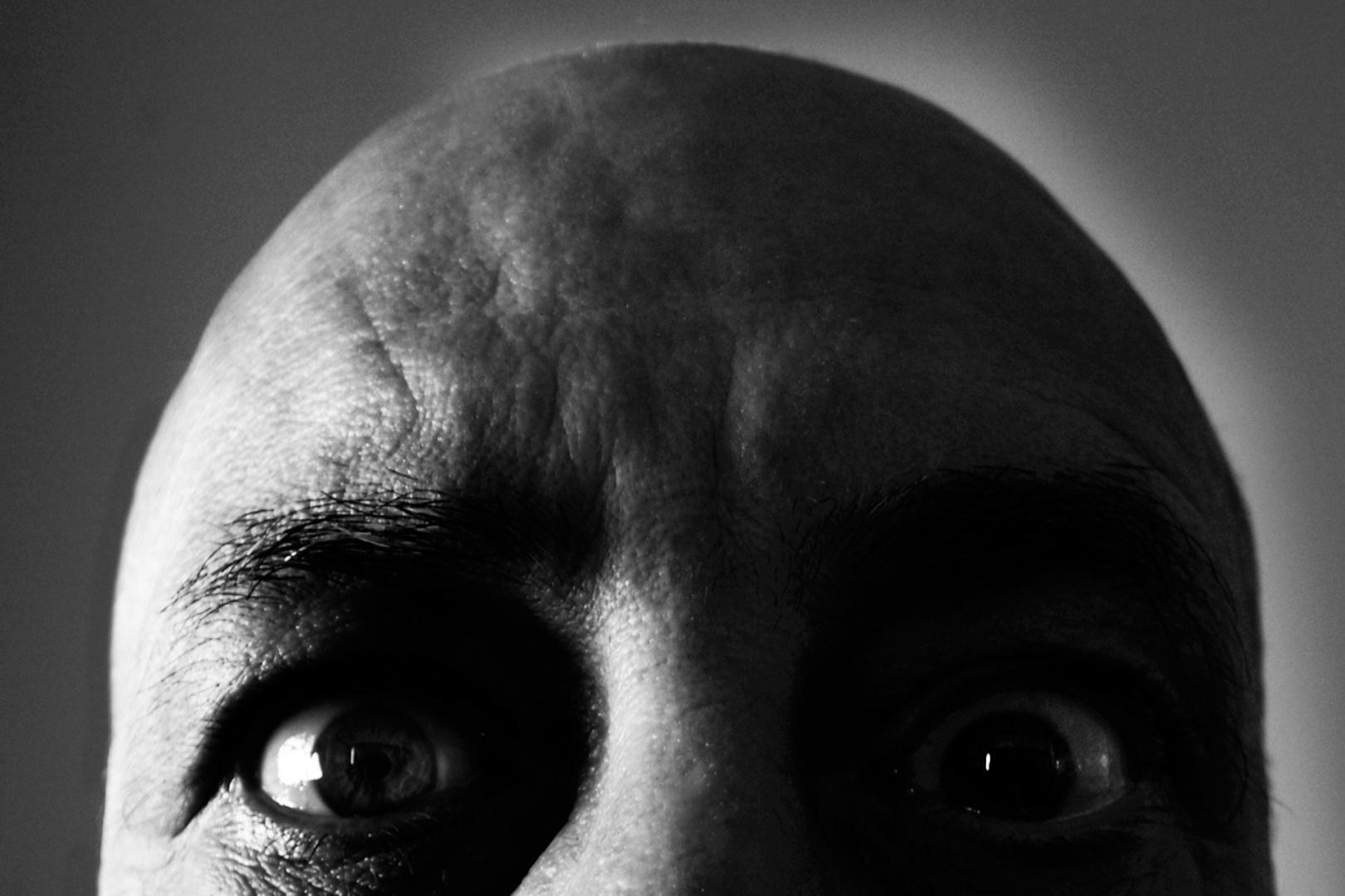 Retratos/meio retrato distorcido