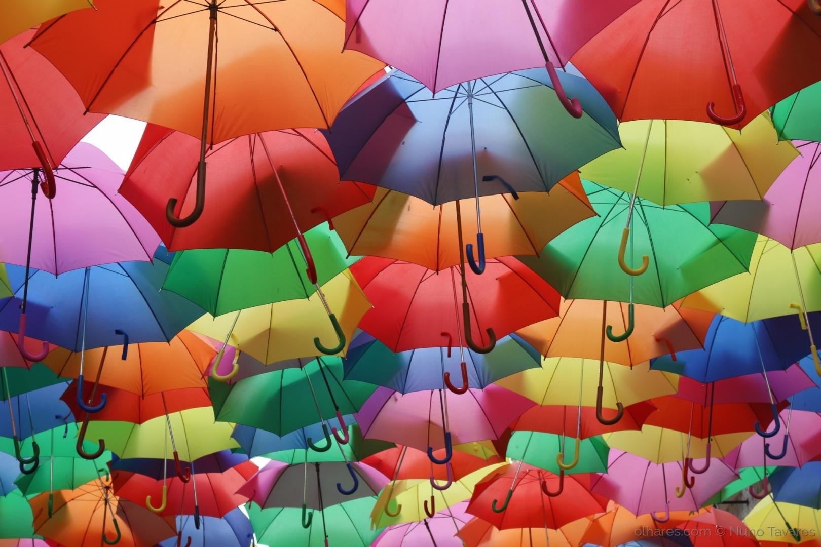 Abstrato/Umbrella Colors