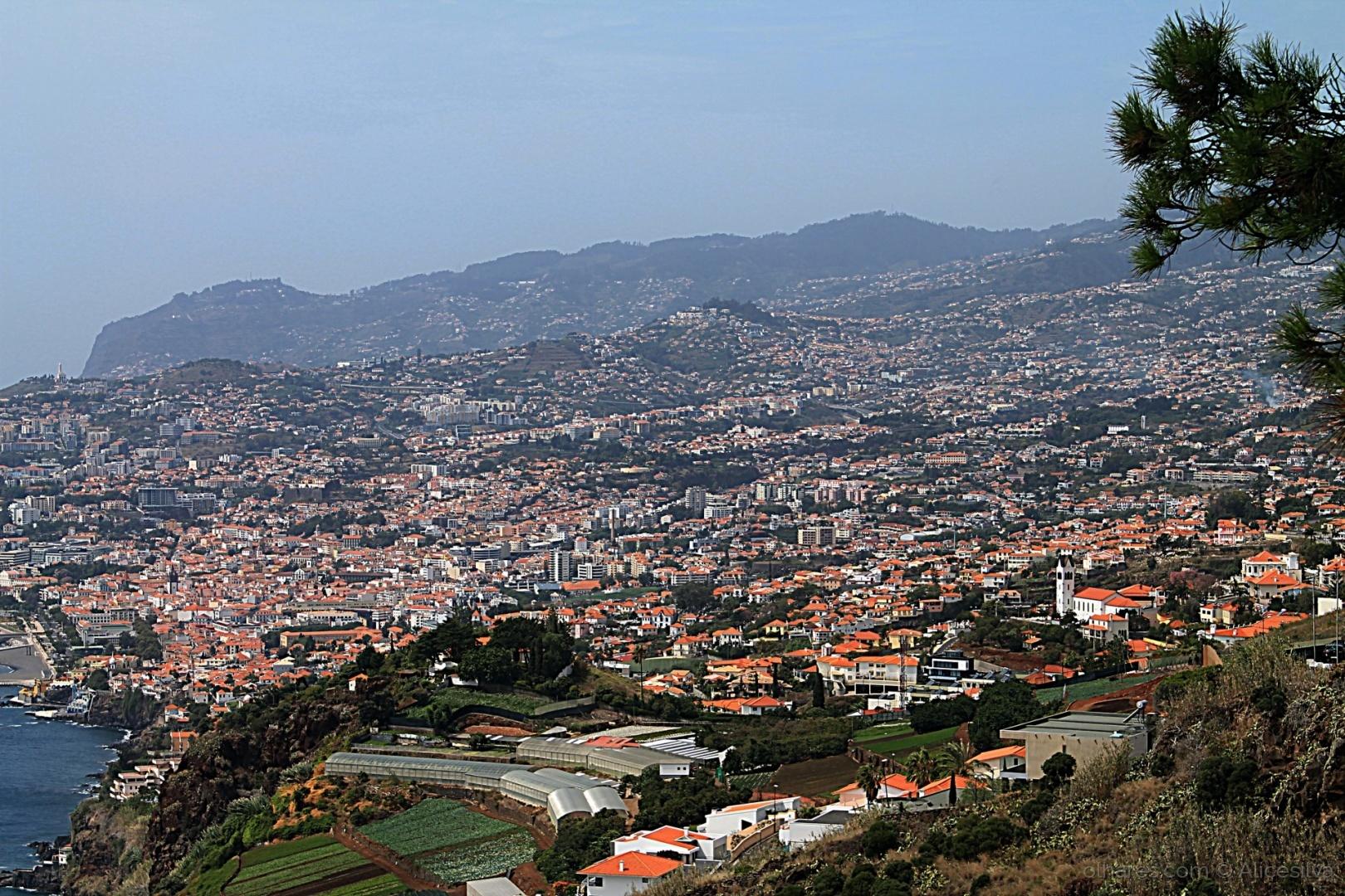 Paisagem Urbana/Madeira.
