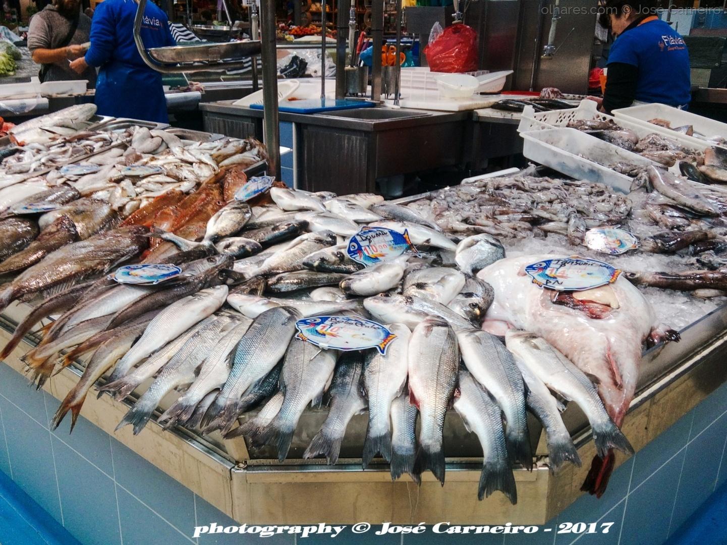 """Gastronomia/"""" DIETA MEDITERRÂNICA ... peixe fresco """" I (Ler)"""