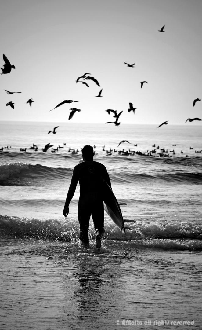Desporto e Ação/[black and white surf]
