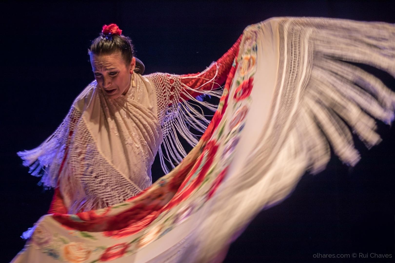 Espetáculos/Alma Flamenca III