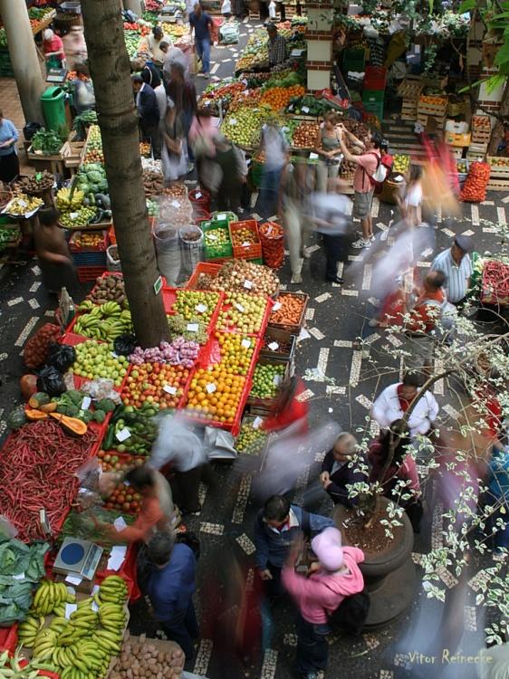 Gentes e Locais/Mercado do Funchal