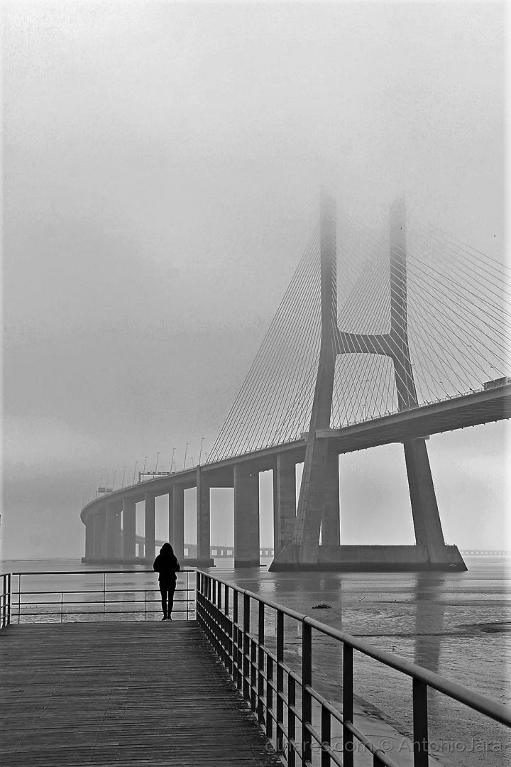 Paisagem Natural/Fotografando a Bruma , a Ponte e o Tejo