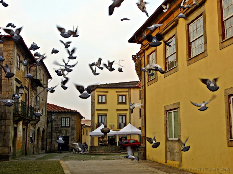 Paisagem Urbana/O meu sonho voar