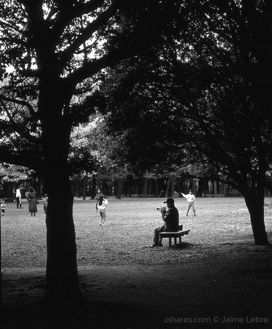 Gentes e Locais/O trompetista solitário