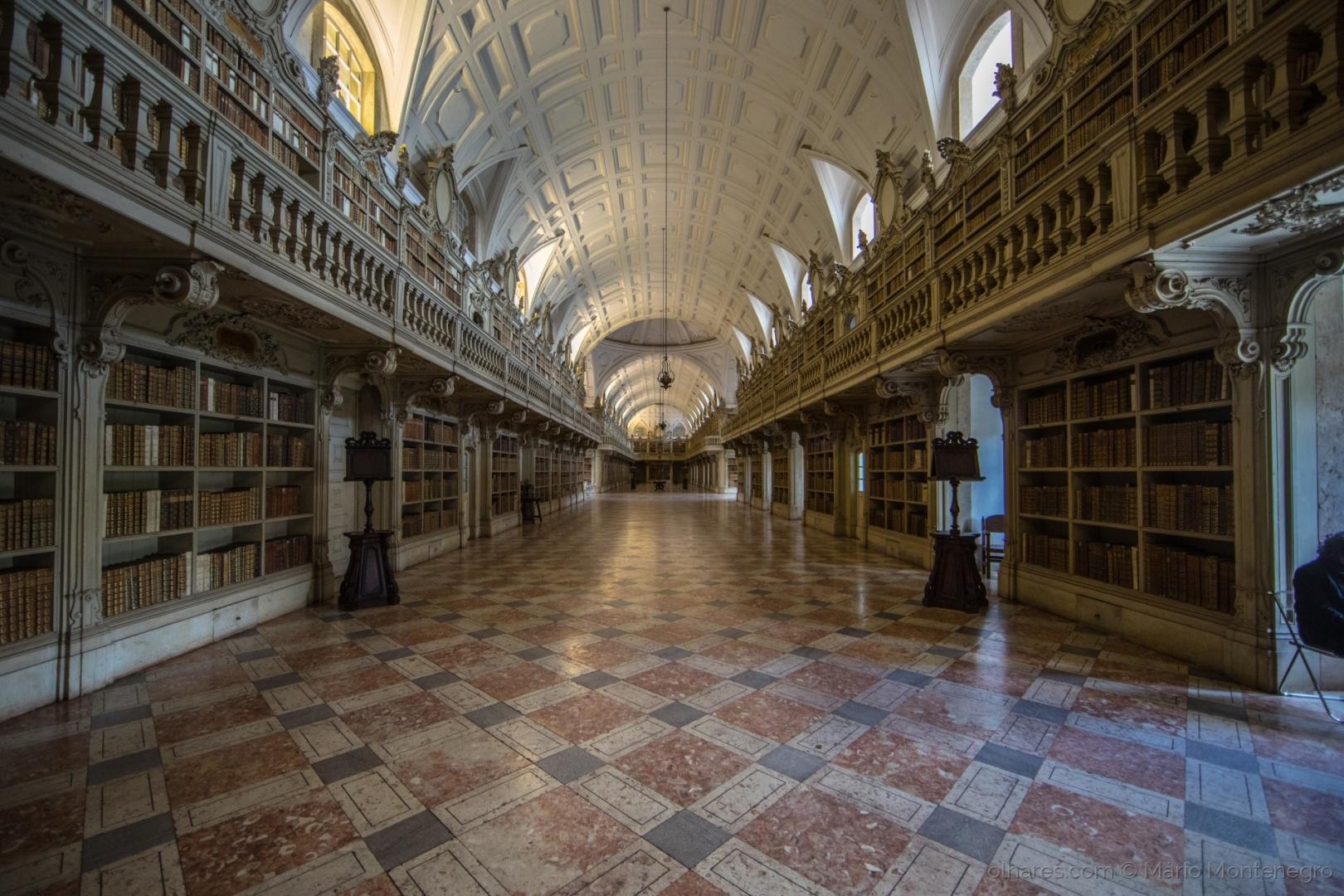 História/A Biblioteca