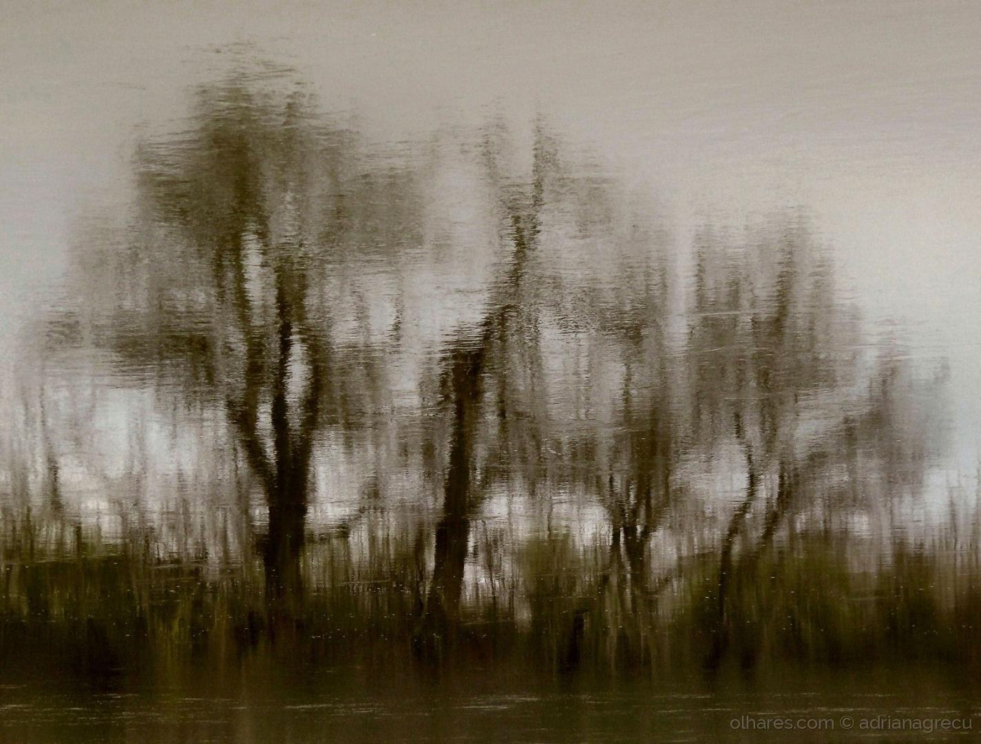 Abstrato/as palavras do vento