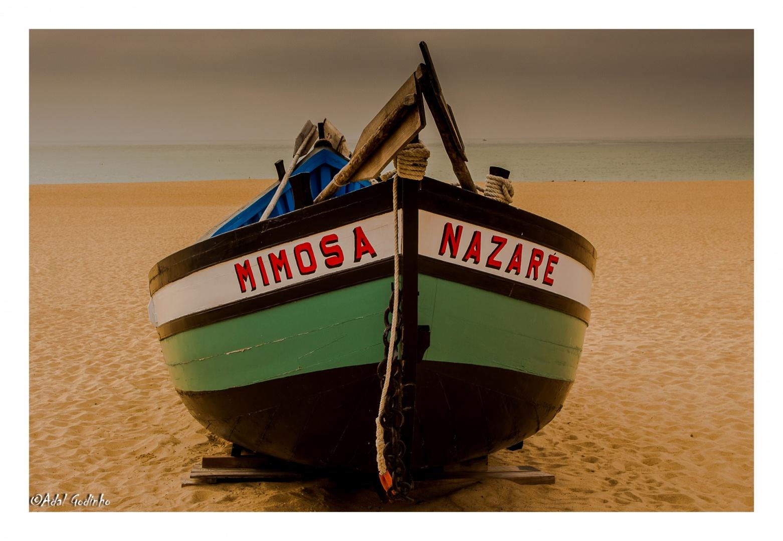 Outros/Mimosa de Nazaré