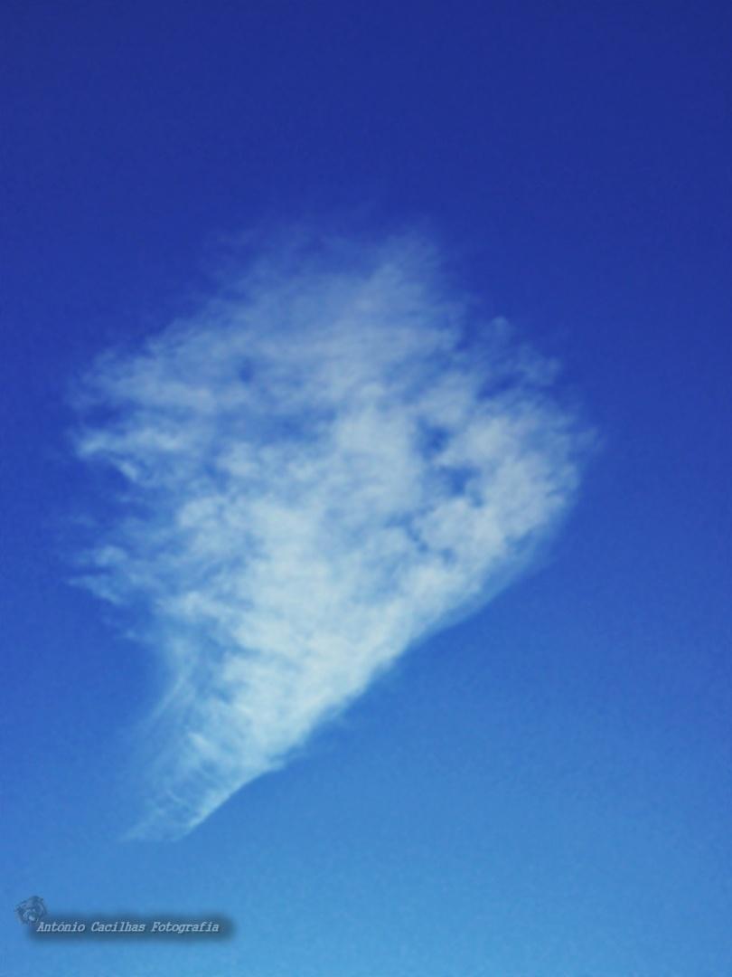 Abstrato/Uma nuvem (ler)
